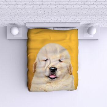 Шалте Кученце
