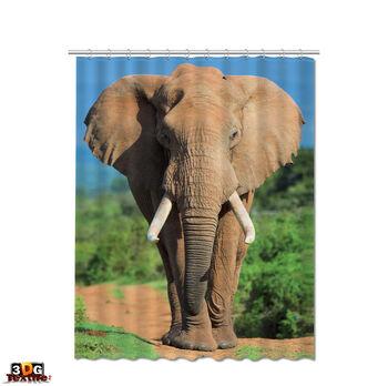 Завеса за Баня Слон